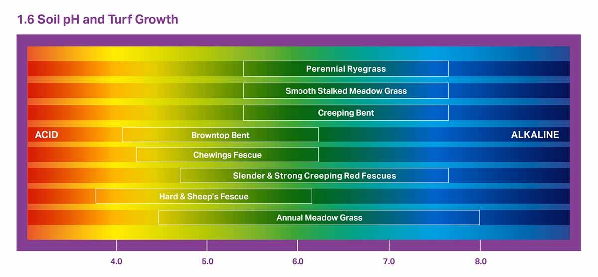 Grass Seed Soil pH