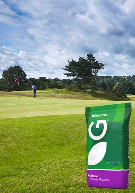 A11 (Golf Greens)