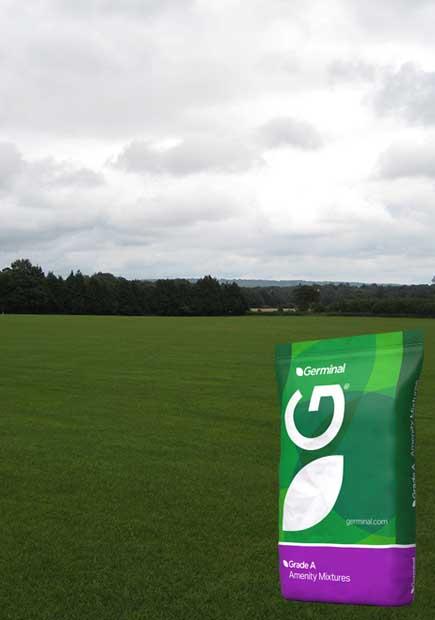A14 (Racecourse and Polo Grounds)