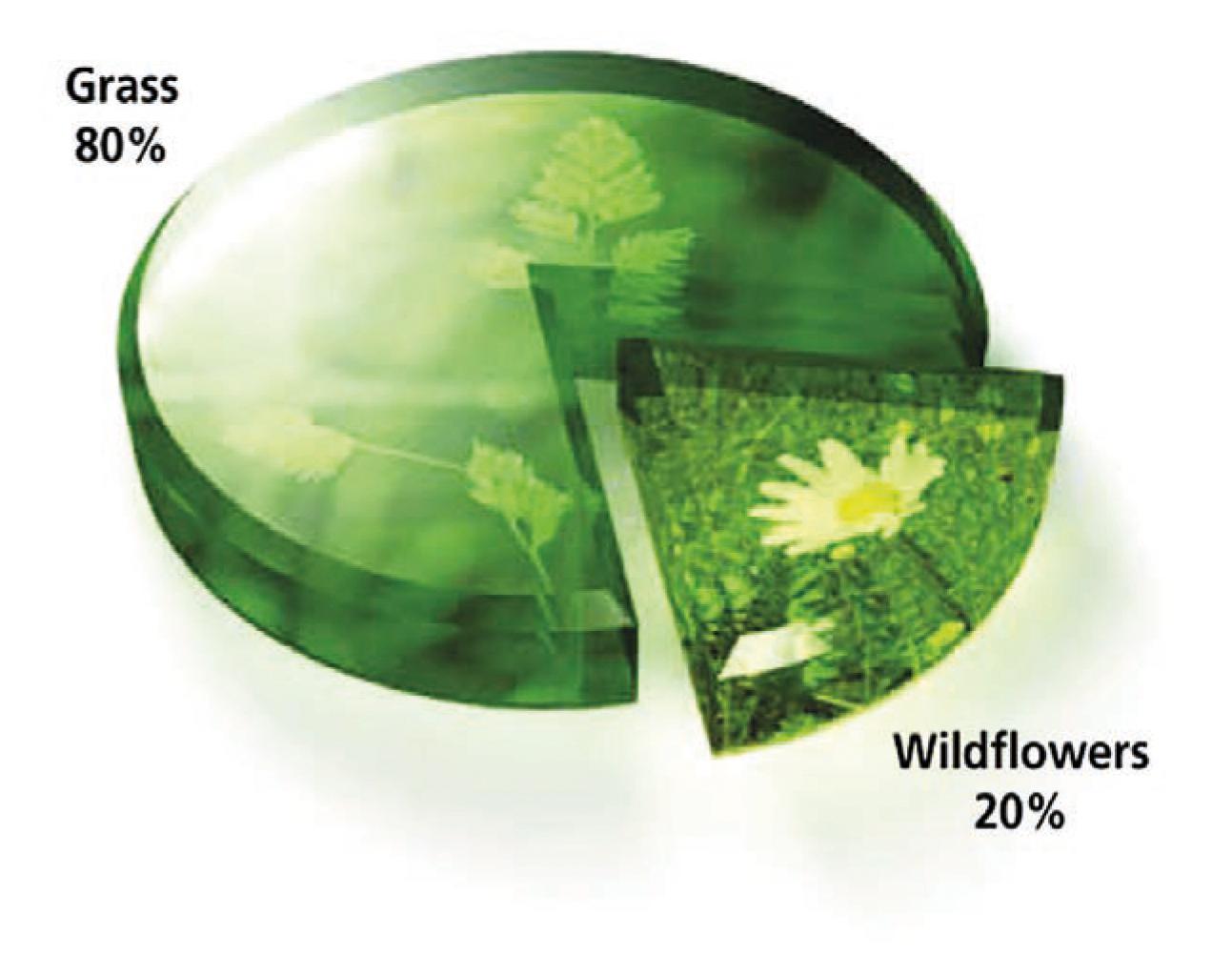 Flora Mixture Pie Chart