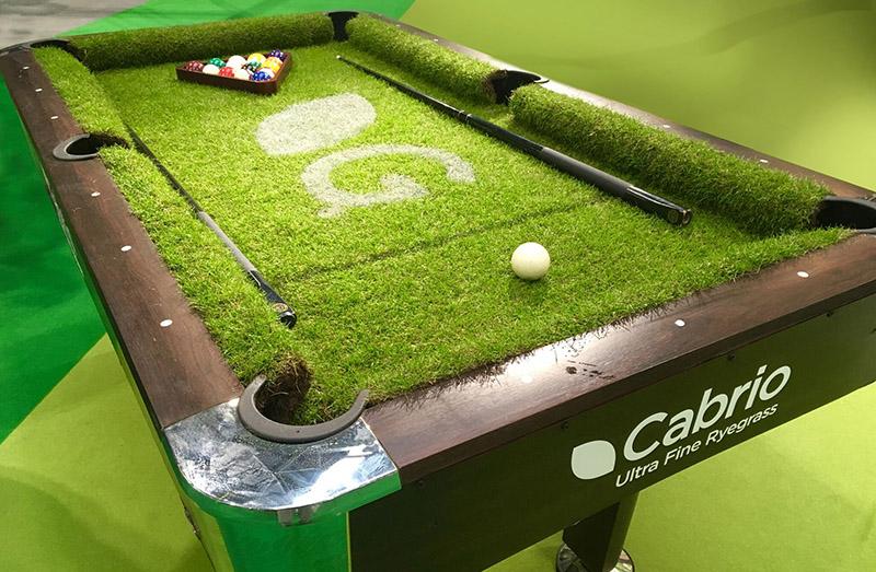 cabrio pool table